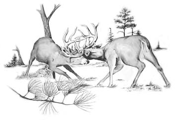 deere fighting